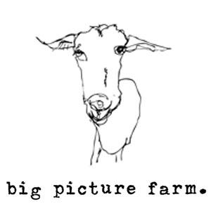 big picture farm logo