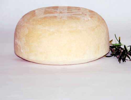 Cow Tomme
